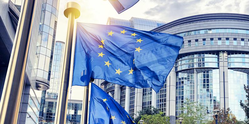 Report | Elezioni Europee 2019