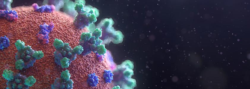 Coronavirus – 2° Aggiornamento dei dati web e social
