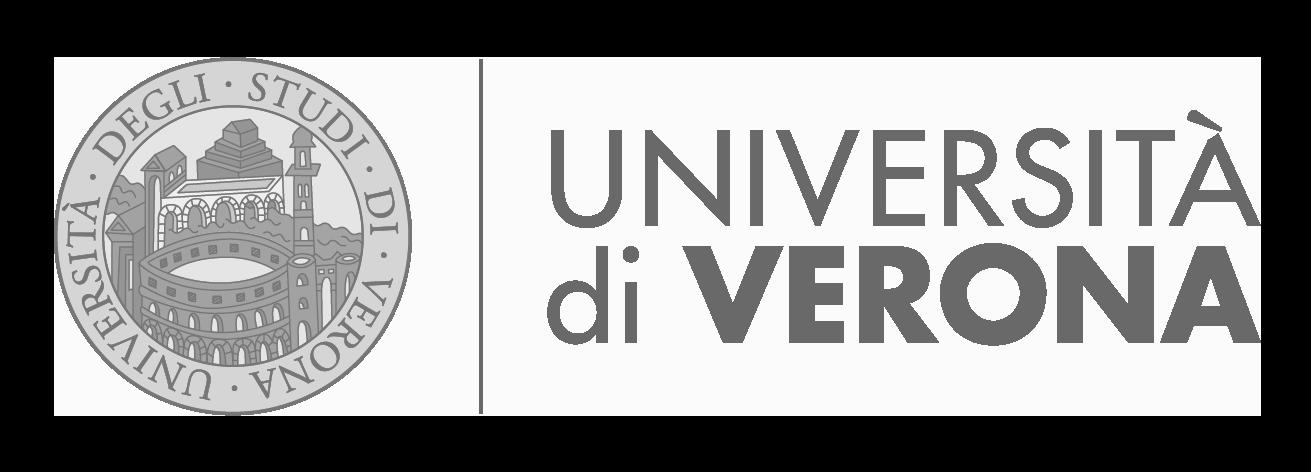 96 università verona